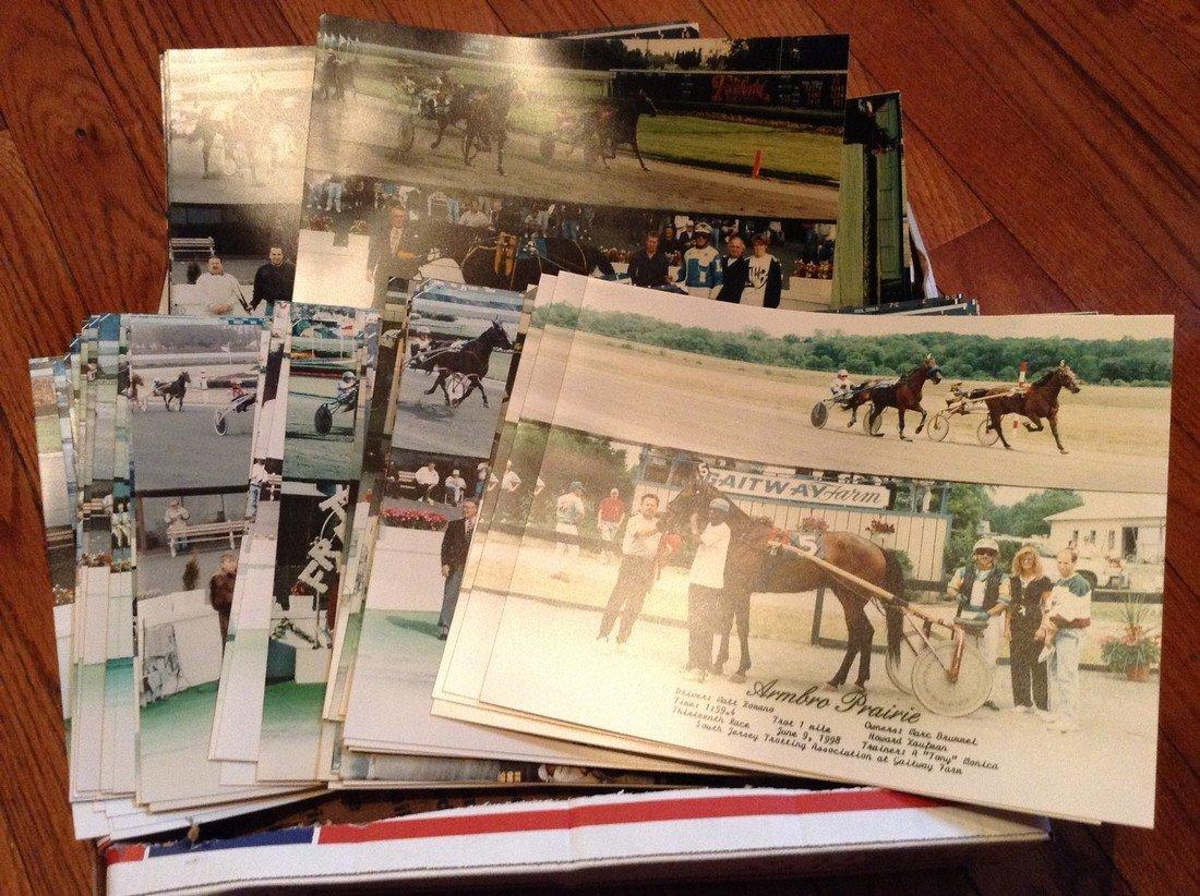 Lot of 50 Horse Racing Winner Circle photos