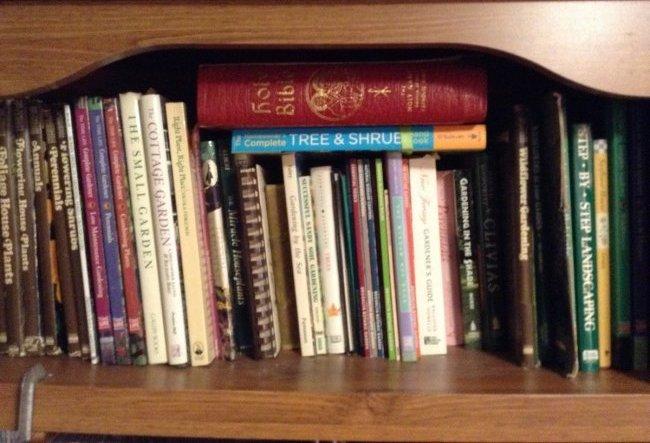 Five Shelfs of Book