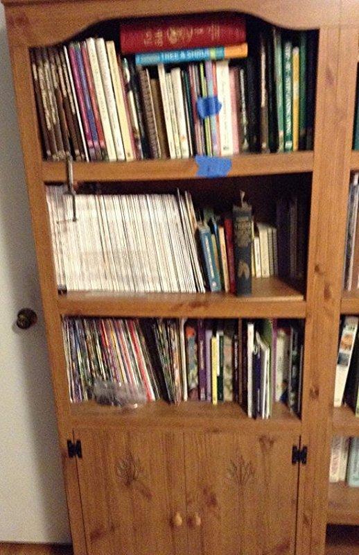 Bookcase NO CONTENTS