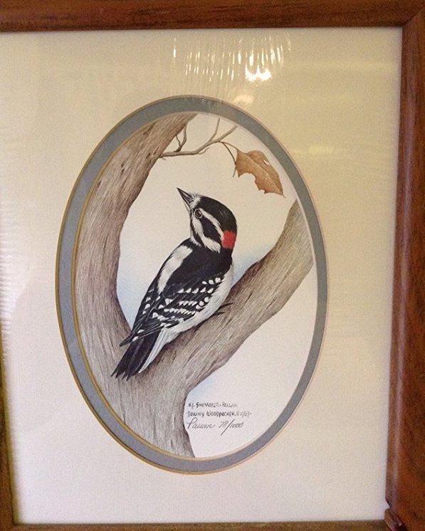 Shomake, Pallan, Dow NY Woodpecker