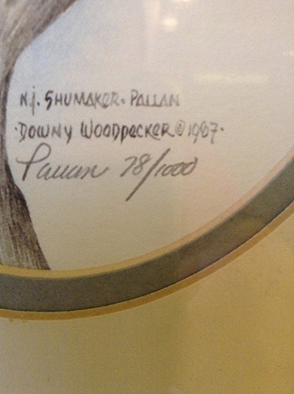 Shomake, Pallan, Dow NY Woodpecker - 2