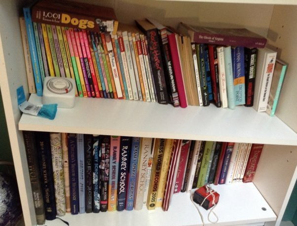 Lot of books - 4 shelves of various book