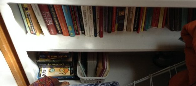 Lot of books - 4 shelves of various book - 2