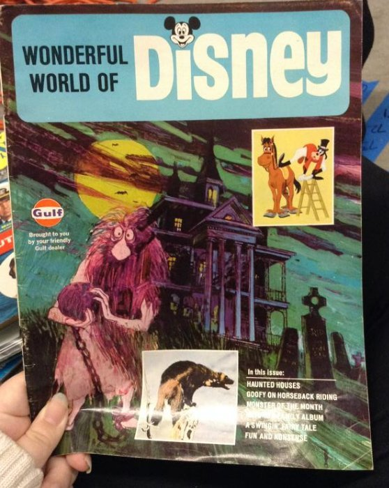 Gulf Wonderful World of Disney
