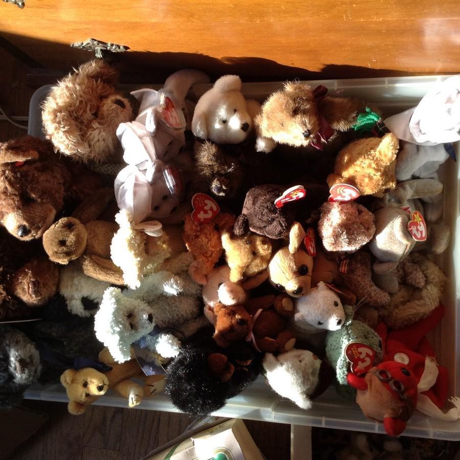 stuffed bears and beanie babies