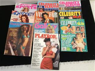 Lot of Celebrity Skin and Celebrity Sleuth Magazines