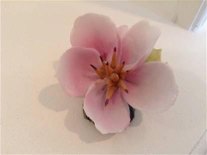 Capodimonte Flower