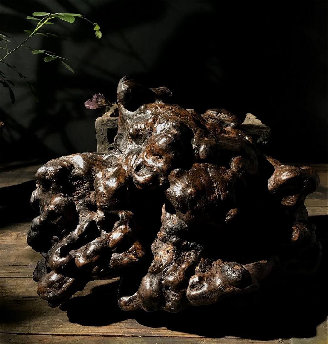rare chinese nanmu schlar root stand - 5