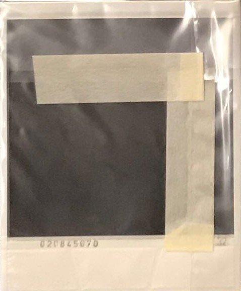 NOBUYOSHI ARAKI Polaroid - 2