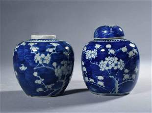Two Small B & W Chinese Porcelain Ginger Jars