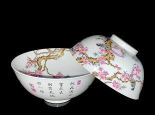 CHINESE FAMILLE ROSE PORCELAIN BOWLS, PAIR