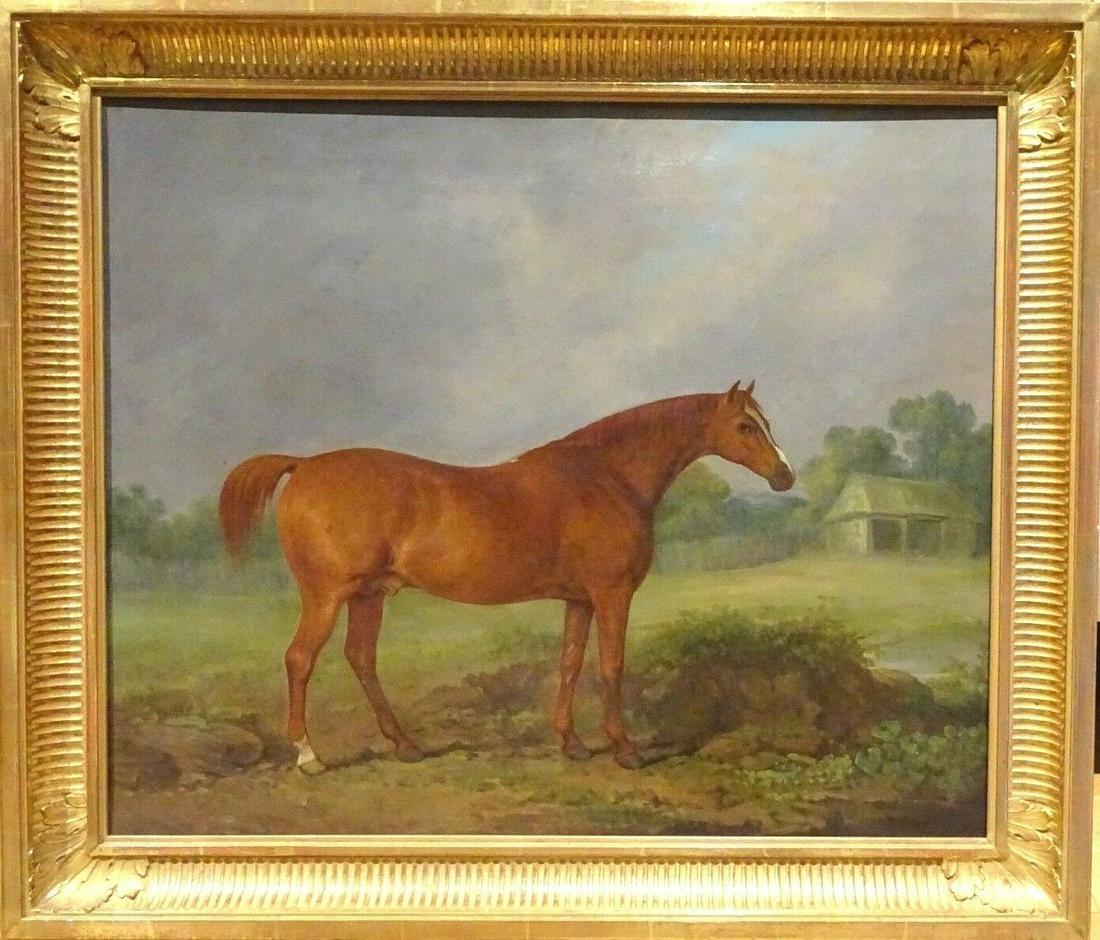 Chestnut Horse Highthyer