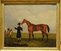 "Race Horse Portrait ""Archibald"" Colonel Peel & Jockey"