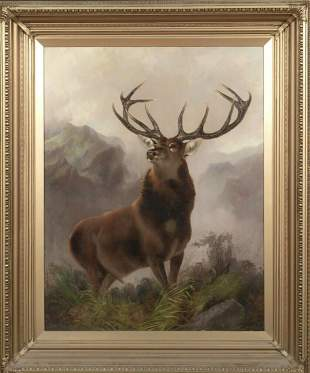 Portrait of A Stag Oil Painting