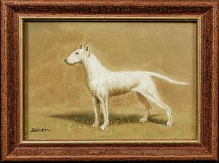 Portrait Of An English Bull Terrier Dog Oil Painting