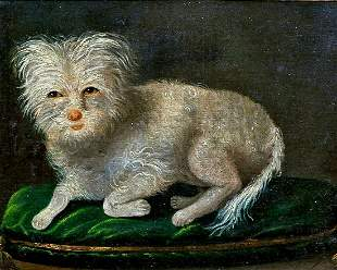 Portrait Of A White Terrier Dog Oil Painting