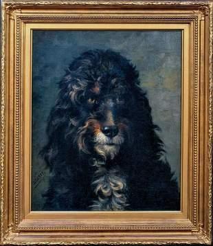 Portrait Of A Dog Poodle Oil Painting