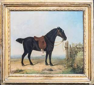 Dark Bay Horse Oil Painting