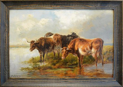 Cows Watering