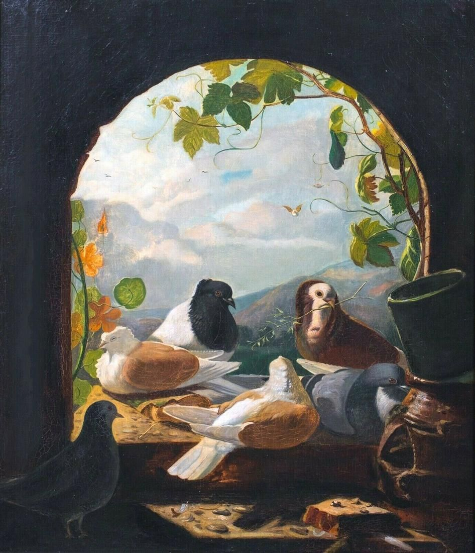 Pigeons & Doves Oil Painting