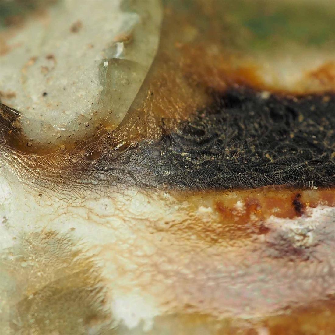 Lidded Water Pot with Brown Spot, Eastern Jin Dynasty - 7