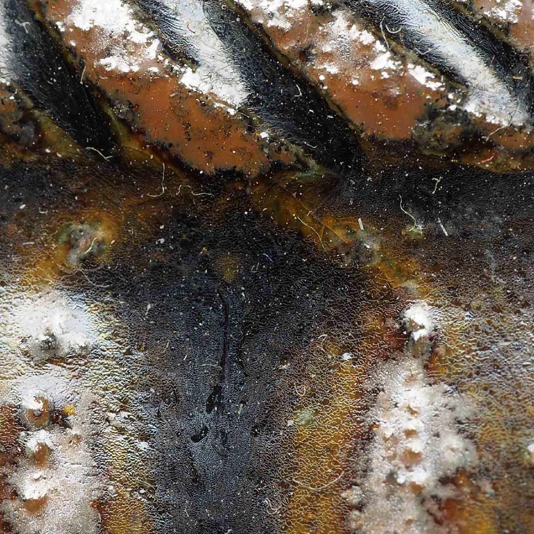 Black glazed Arabic Style Ewer with Lid, Song Dynasty - 9