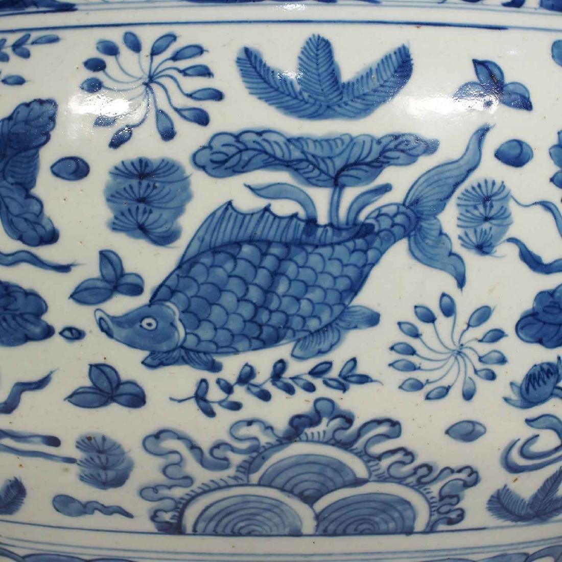 Jar with Fishes in a Pond Design, Wanli, Ming Dynasty - 5