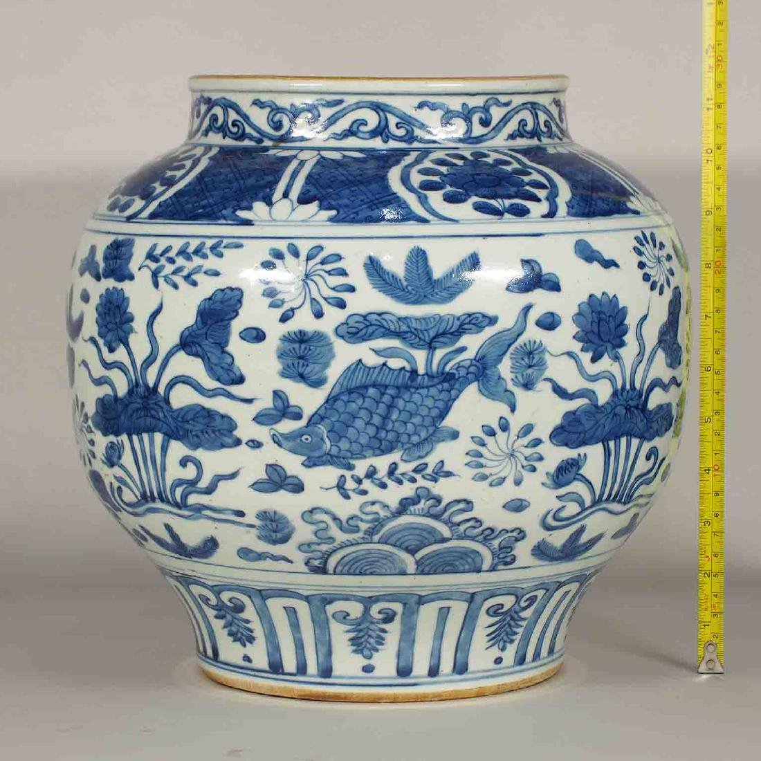 Jar with Fishes in a Pond Design, Wanli, Ming Dynasty - 9