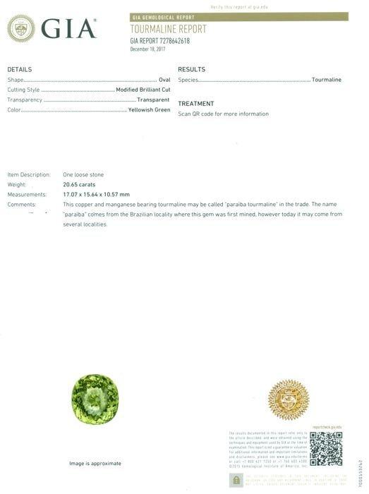 GIA Cert. 20.65 ct. Neon Yellowish Green Paraiba BRAZIL - 2