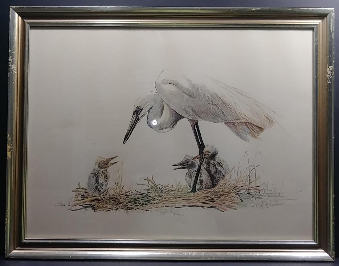 Edward Marshall Boehm Original Hand Colored Engraving
