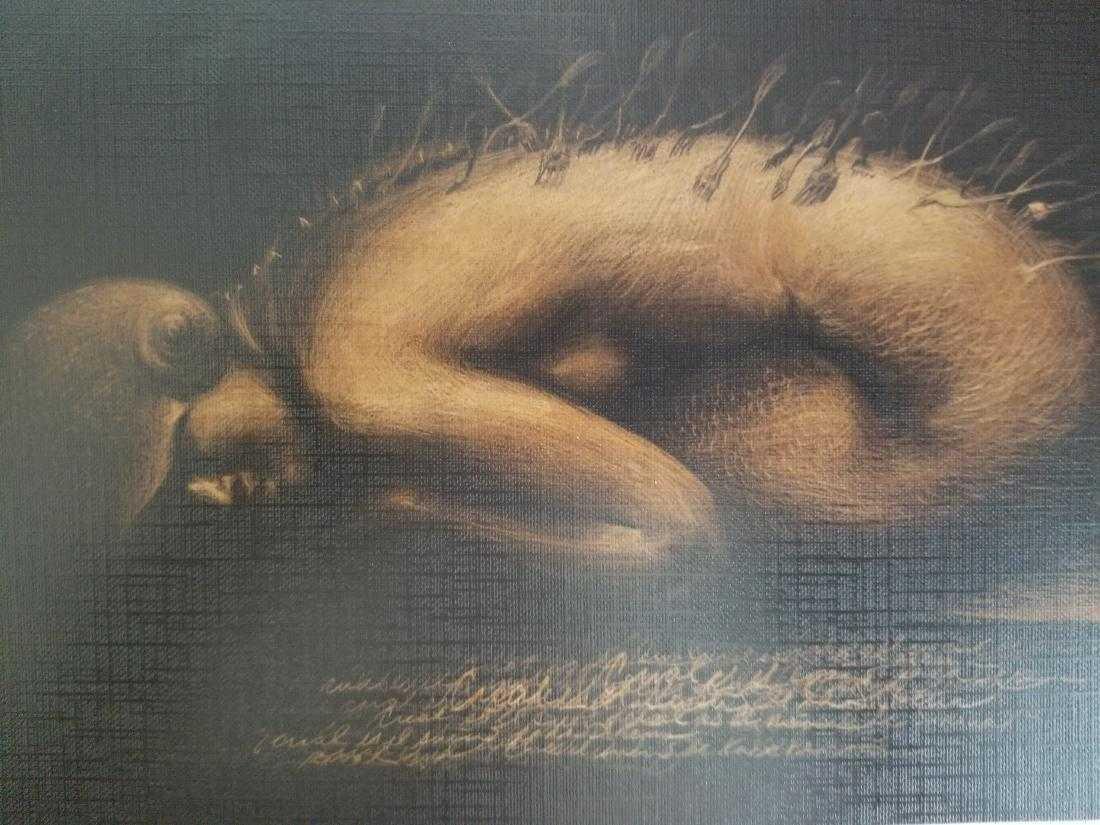 Roberto Fabelo Lithograph Print on Paper  -El Sueno de - 2