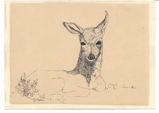Deer Art Painting by Doris Hall Pen. Coral Cables