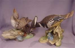 Boehm Porcelain Pair Hooded Mergansers # 496