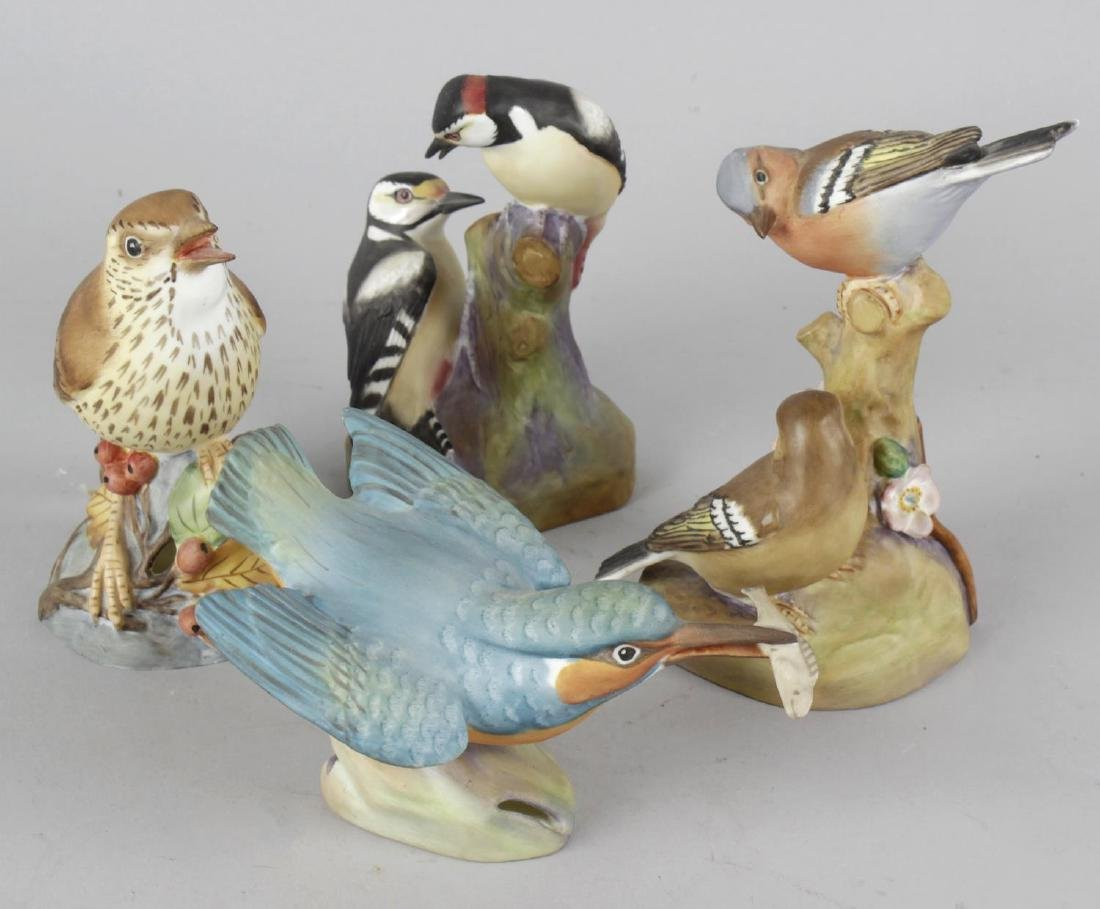 A group of Royal Worcester and other bird figurines.