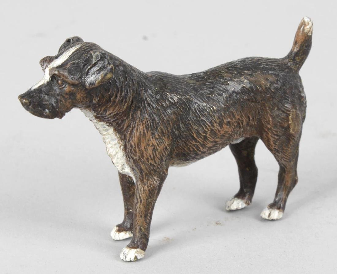 A cold painted bronze study of a standing Terrier dog,