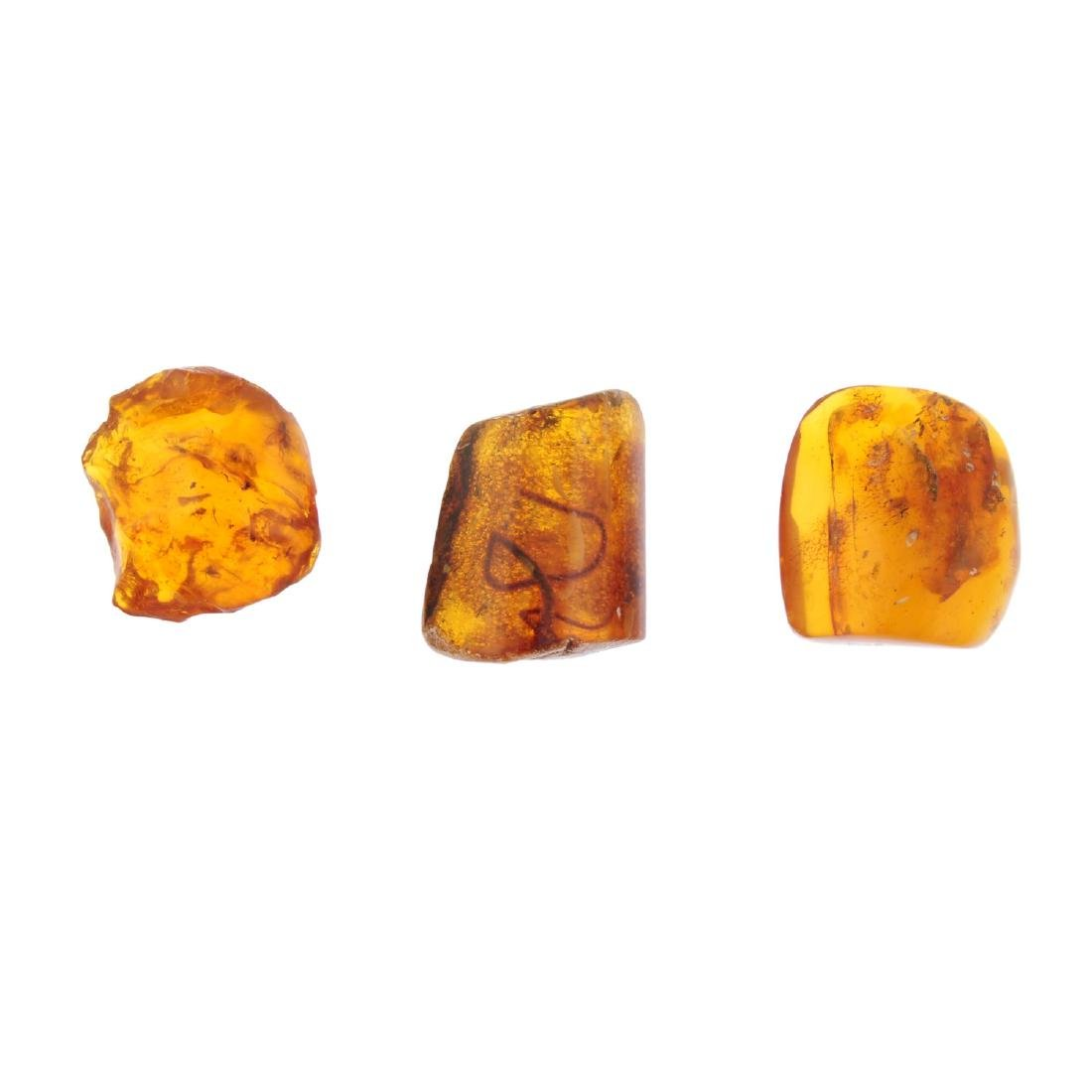 Three natural Baltic amber pieces with insect and fauna