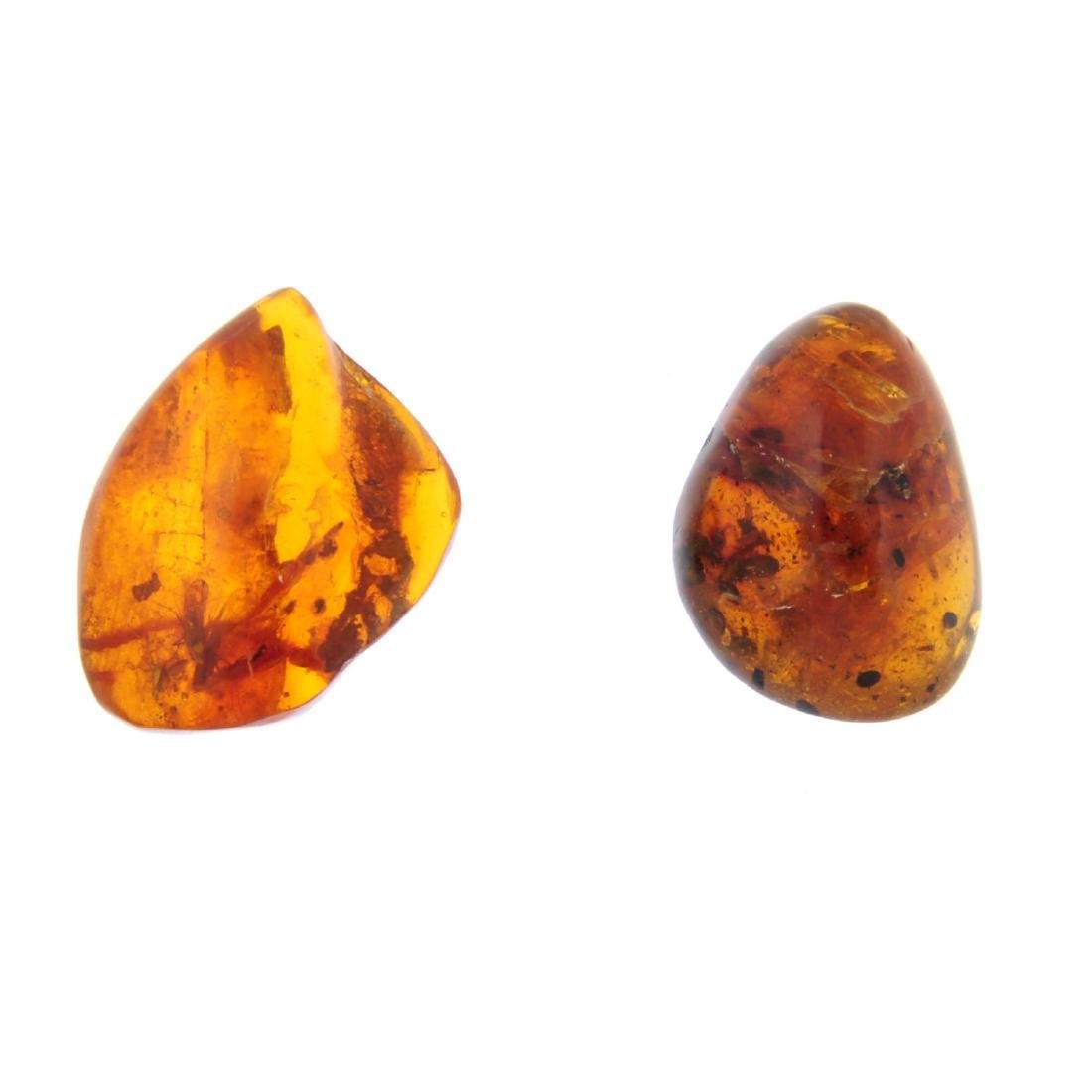 Two natural Baltic amber polished pieces with insect