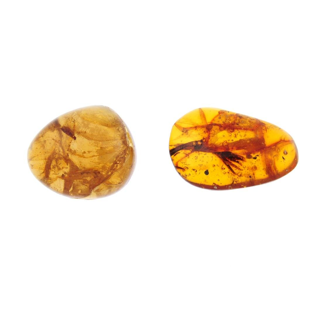Two pieces of natural Dominican Republic amber with