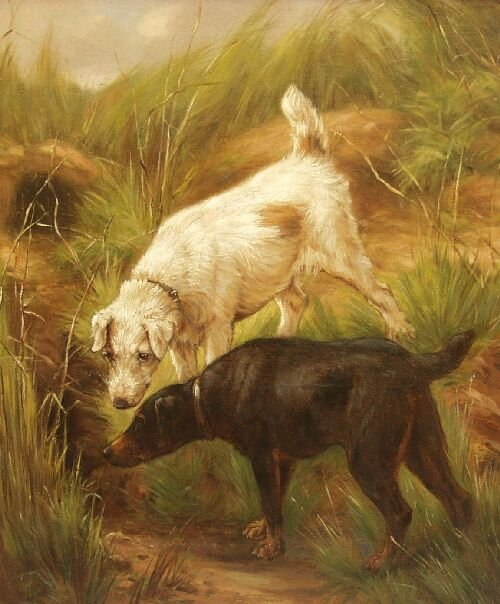 5: 20th Century British Two young terriers wa