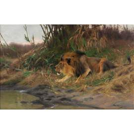 Wilhelm Kuhnert, Lion by the Watering Hole