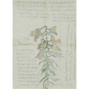 Charles Steffen, Dying Snapdragon, 1994