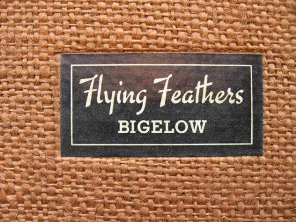 209: Bigelow, Horatio. Flying Feathers