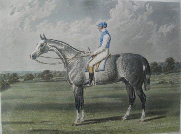 1017: A J.F. Herring Race Horse Aquatint,