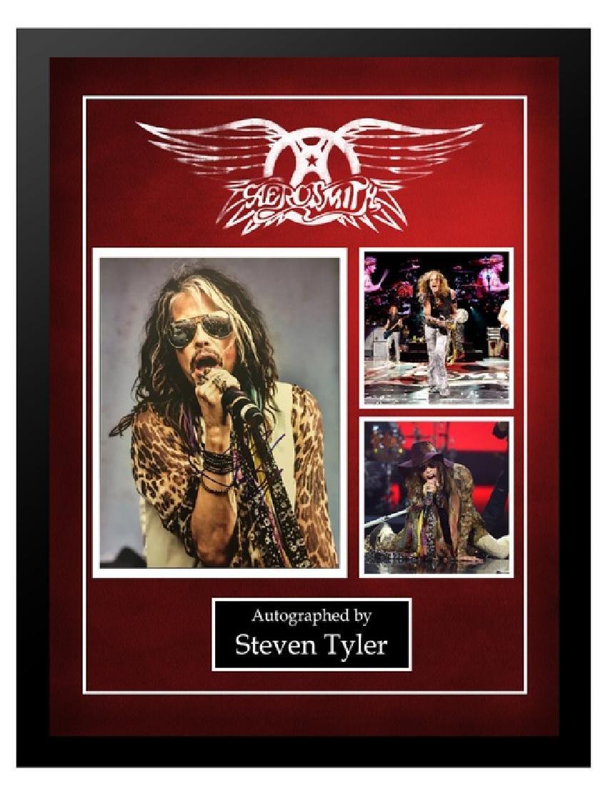 Aerosmith Steven Tyler Collage