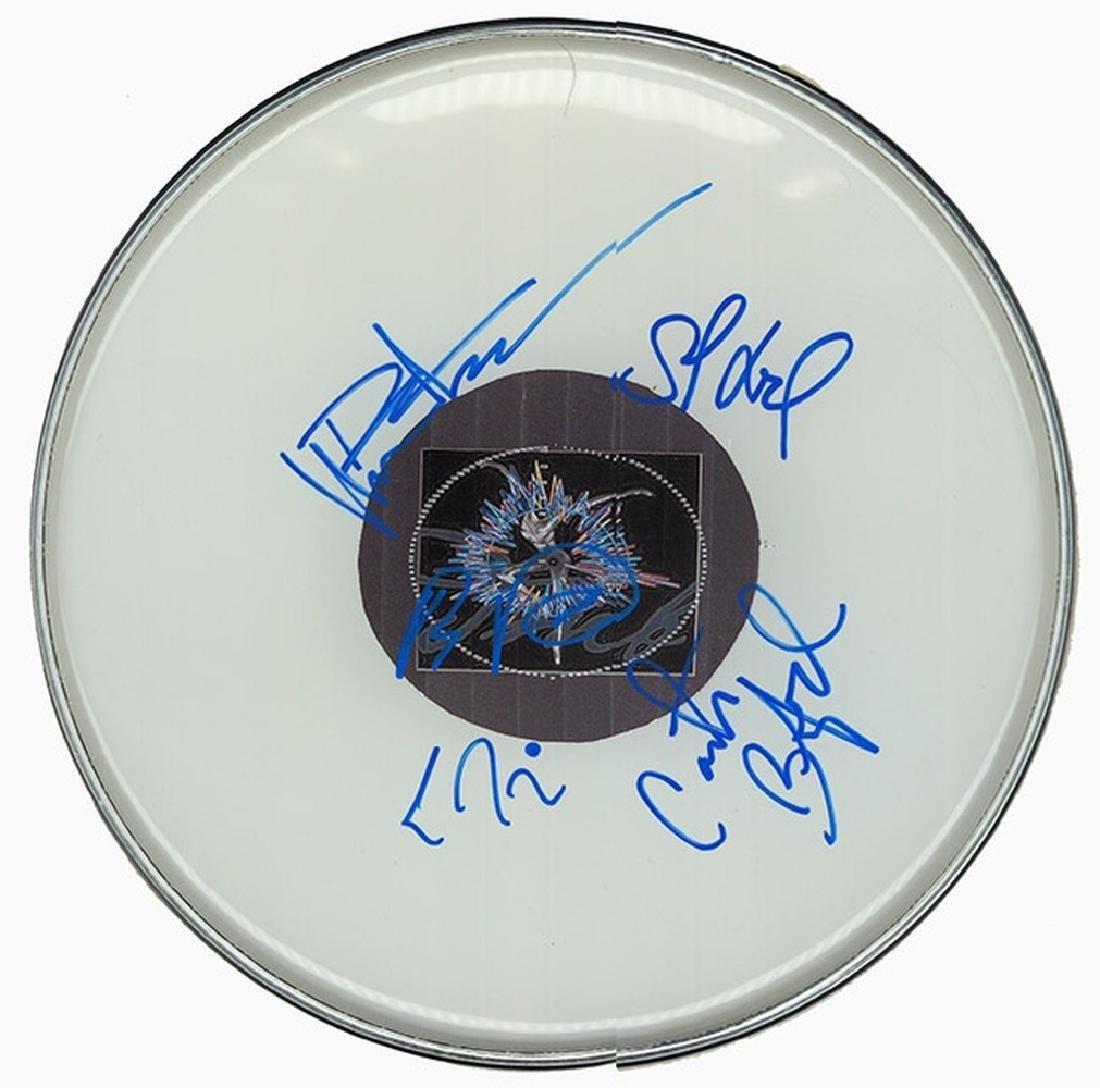 Dave Matthews Band Drum Head