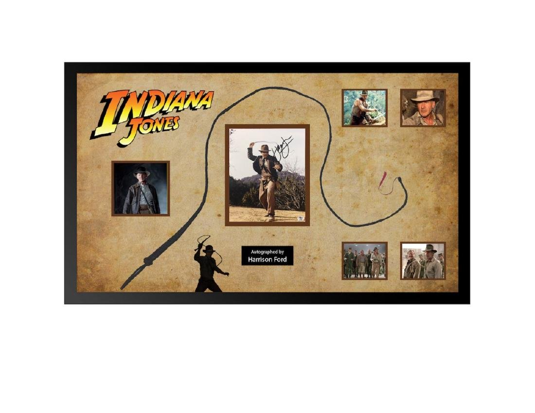 Indiana Jones Framed Whip