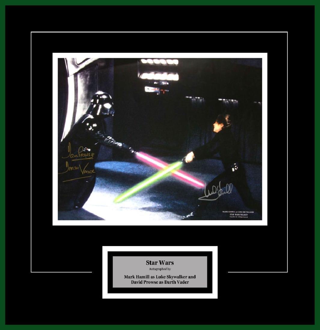 Luke Skywalker and Darth Vader Artist Series