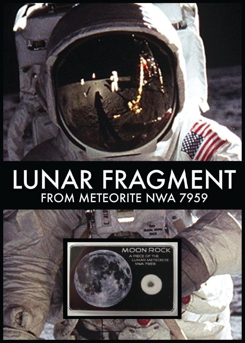 Framed Lunar Meteorite Piece Collage