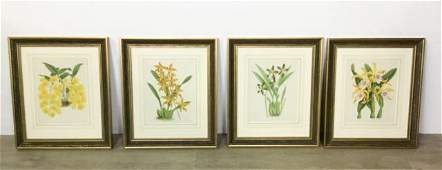 4 John Nugent Fitch Orchid Botanical Prints
