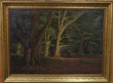 "Oil on Canvas ""Trees"""